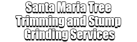 Santa Maria Tree Trimming and Stump Grinding Services Logo-We Offer Tree Trimming Services, Tree Removal, Tree Pruning, Tree Cutting, Residential and Commercial Tree Trimming Services, Storm Damage, Emergency Tree Removal, Land Clearing, Tree Companies, Tree Care Service, Stump Grinding, and we're the Best Tree Trimming Company Near You Guaranteed!